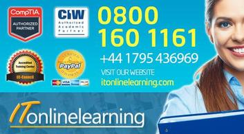IT ONLINE LEARNING - Overview